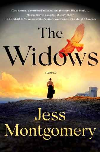 'The Widows' is intriguing debut by Jess Montgomery