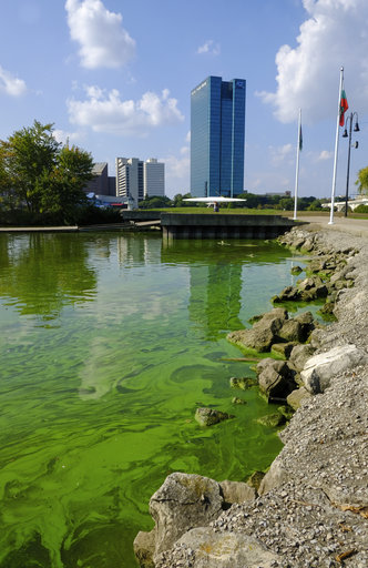 EPA plan seeks cuts in pollution that causes Lake Erie algae