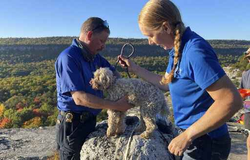 In this photo provided by New York State Parks on Wednesday, Oct. 13, 2021, Ulster County SPCA Executive Director Gina Carbonari, right, and SPCA Supervisor Chris West, left, check a rescued a 12-year-old dog named Liza, found trapped after five days deep inside the narrow, rocky crevice at Minnewaska State Park Preserve in Kerhonkson, N.Y. A dog trapped for five days deep inside a narrow, rocky crevice at a state park north of New York City was rescued unharmed - though it was hungry and thirsty, parks officials said Wednesday. (New York State Parks via AP)