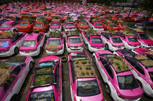 Miniature gardens are planted on the rooftops of unused taxis parked in Bangkok, Thailand, Thursday, Sept. 16, 2021. Taxi fleets in Thailand are giving new meaning to the term