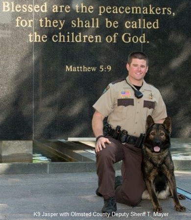 K9 Jasper with Olmsted County Deputy Sheriff T. Mayer