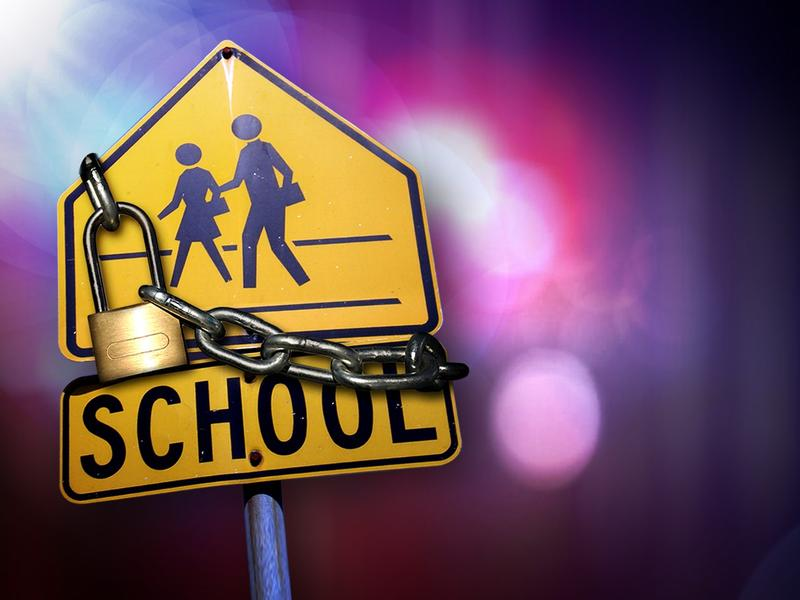 Student In Custody After Bringing Gun To School
