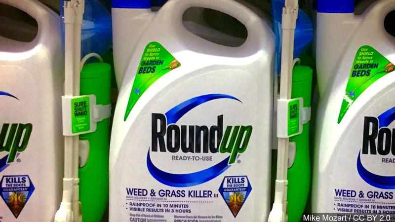 Judge Rules California Can Label Roundup Ingredient as Potentially Cancer Causing