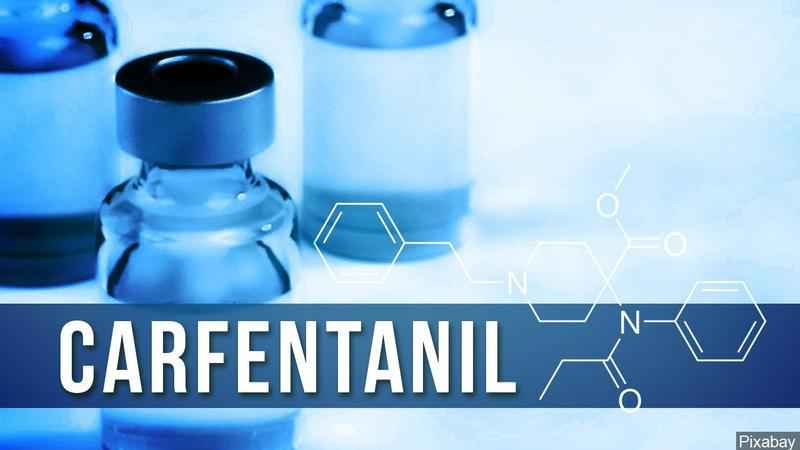 5 More Carfentanil Deaths Identified in Hennepin County