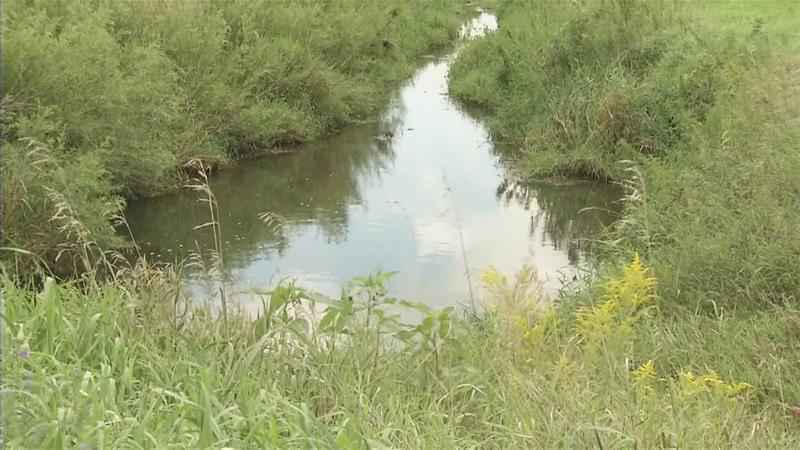 Deadline Looms for Farmers, Landowners to Have Buffer Strips