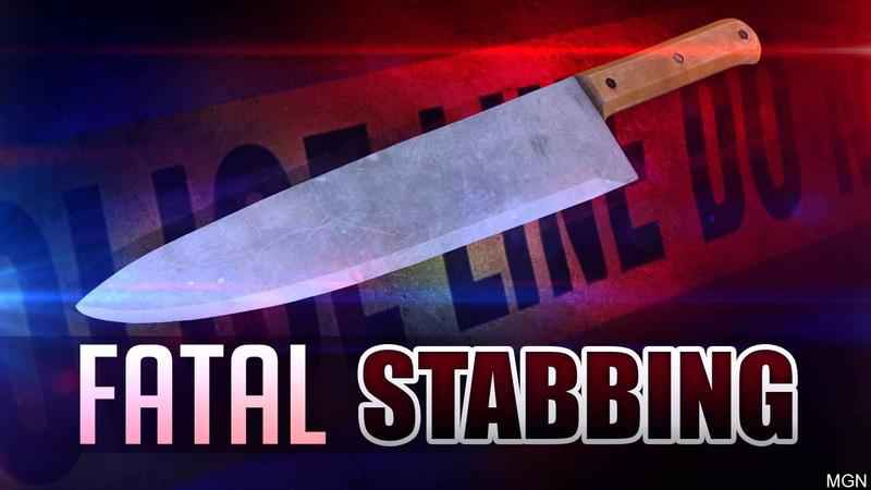Man Fatally Stabbed in Minneapolis
