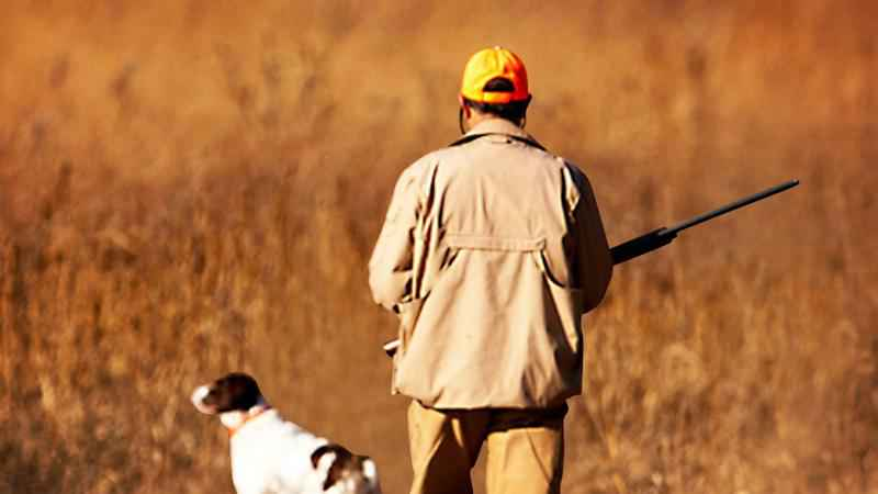 More people are flocking to rochester for hunting safety courses