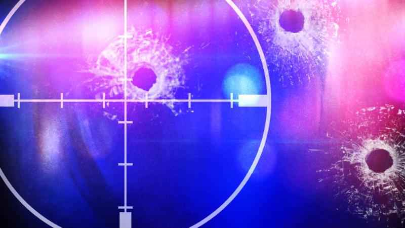 Albert Lea Police Investigating Shooting