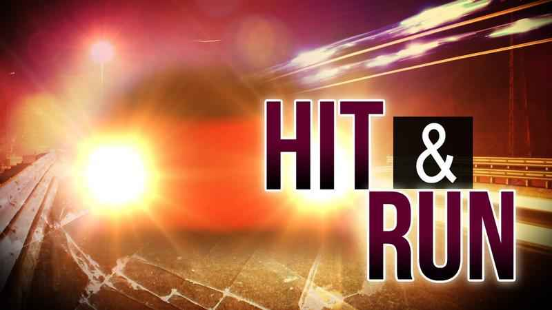 Couple arrested in deadly hit and run