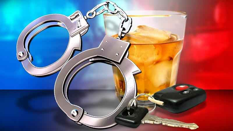 Rochester PD: Sunday Night's Lone DWI Involves 'Kitty Tale'