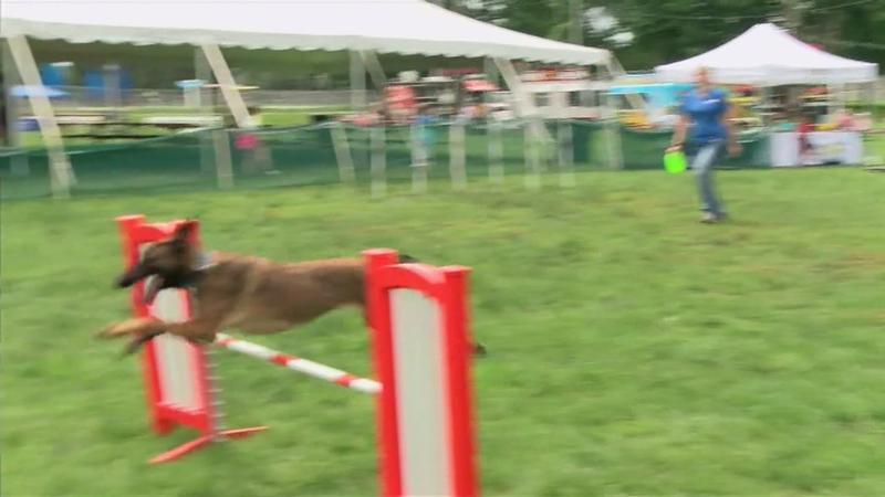 """Rochesterfest: """"The Magic of Pets"""""""