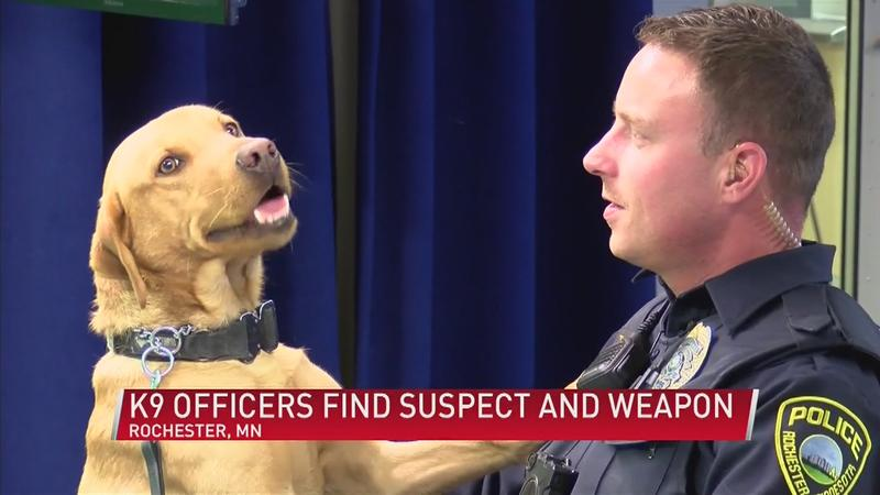 Law Enforcement Praise K9 Officers for work following Shooting in Rochester