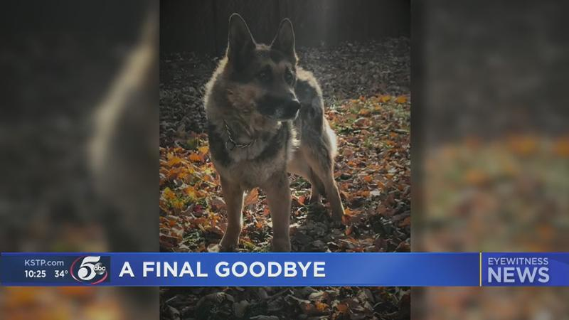 Retired New Hope K-9 laid to rest after decade-long career