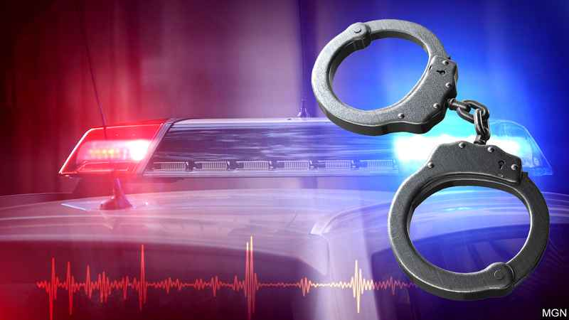 Handcuffed suspect takes off in squad car in Eagle Grove, officer fires gun