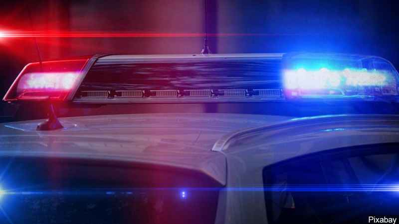 Police say 2 dogs attacked delivery driver in northeast Iowa