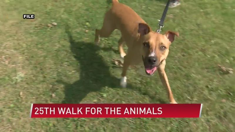 25th Annual Walk for the Animals on Sunday in Austin