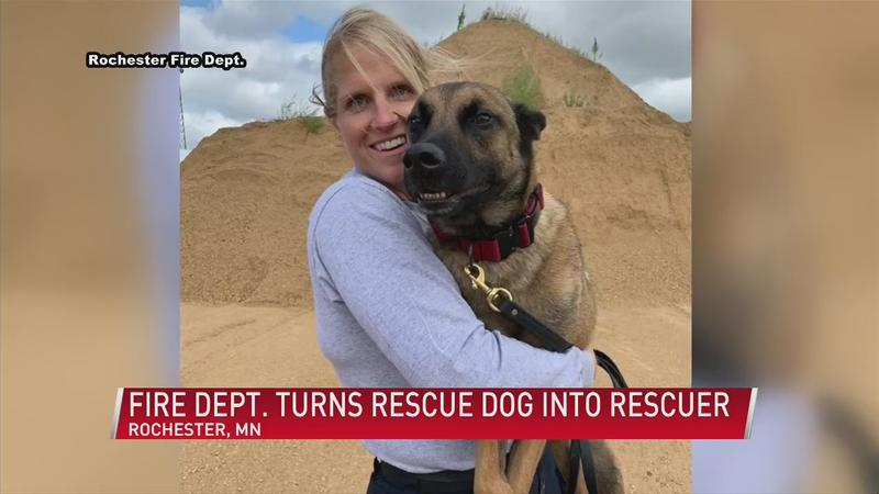 From rescue to rescuer: Rochester Fire Dept.'s new search and rescue dog