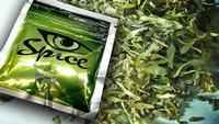 Overdoses from synthetic marijuana on the rise