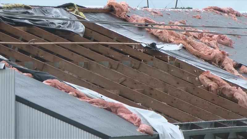 Storm Damage Across Southeast Minnesota, Northern Iowa