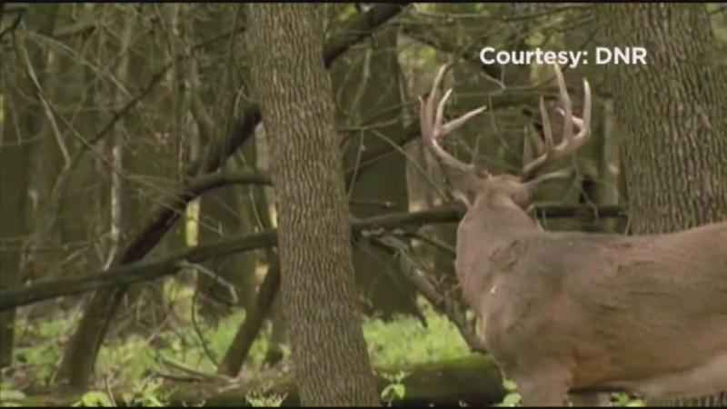 Nature Center Hosts Deer Hunt