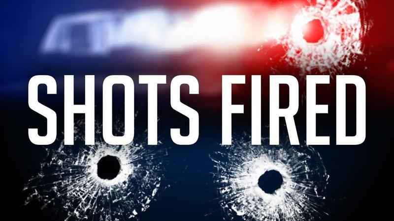 Police Investigating After Gunshots Fired In Nw Rochester