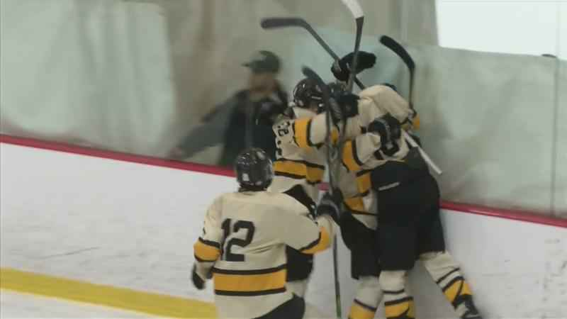 Mankato East Tops Lourdes for Section Boys Hockey Title, 6-1