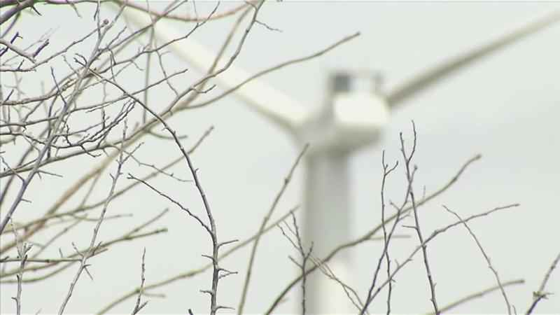 Wind Farm Hearing Opens Floor for Public Commentary