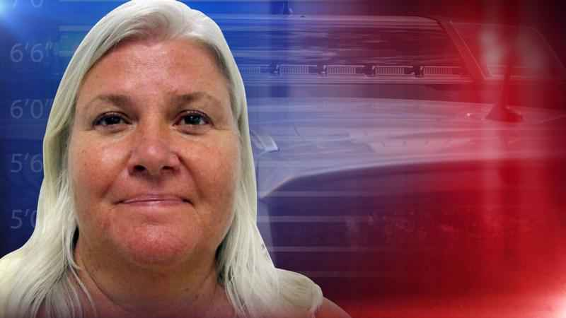 Guns Found in Motel Room, Latest on Arrest of Lois Riess