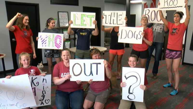 """Dog Pound"" Ready to Cheer on Rochester's American Ninja Warrior"