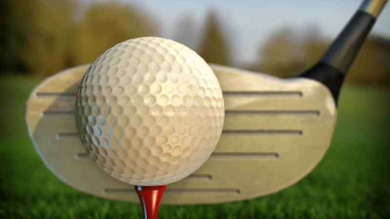 Fillmore Central Finishes One Stroke Short of Championship