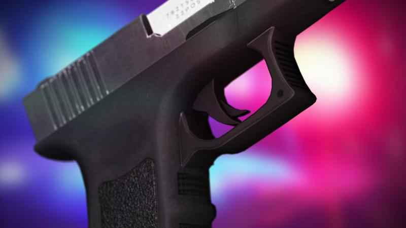 Police Investigating Gunshots Fired in SW Rochester