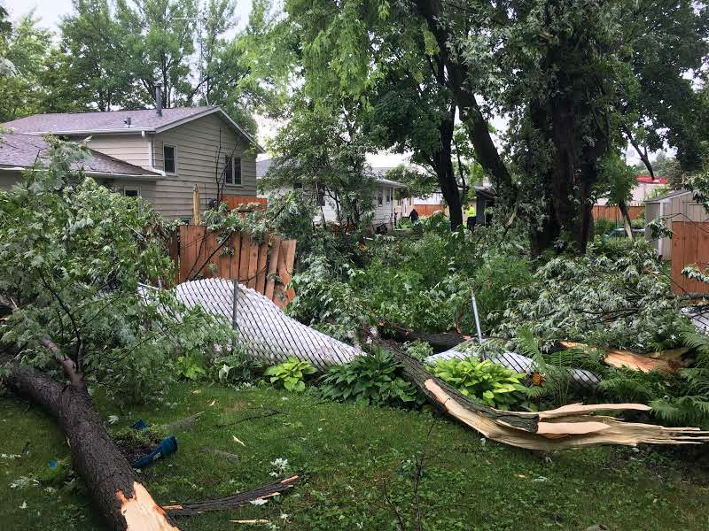 Man Hit by Lightning; Dozens of Trees Snap in Half after Storms Barrel Through