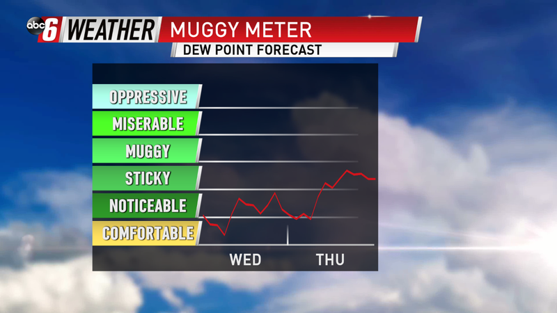 Definitely Not Muggy
