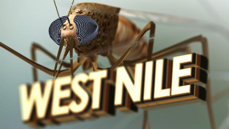 MS confirms 1st case of West Nile virus for 2019