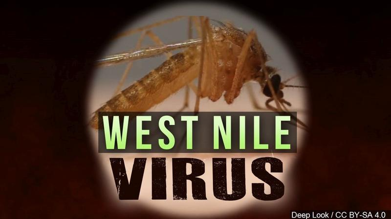 Iowa reports 1st confirmed 2019 human West Nile virus case