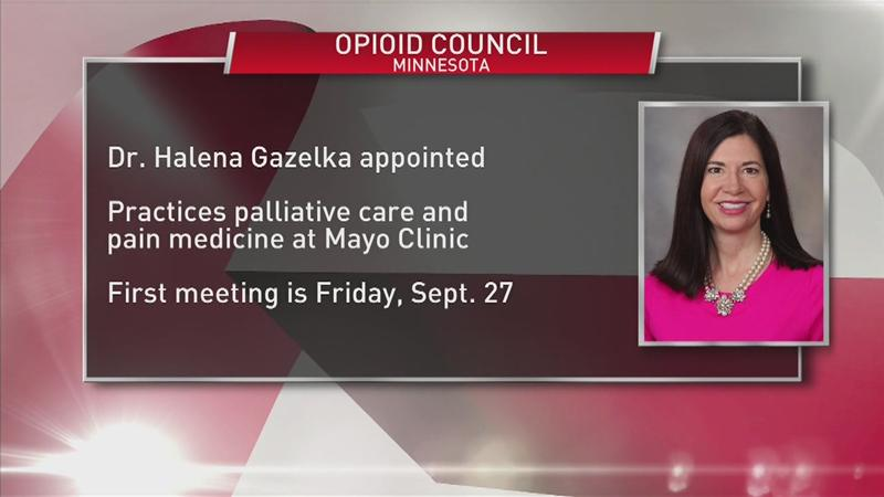 Rochester doctor named to governor's opioid council