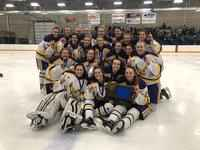 Rochester Lourdes Girls Hockey Heading to State