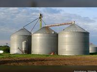 Man trapped in grain bin dies