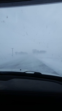Whiteout conditions in rural Freeborn county as of noon.