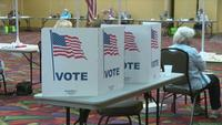Video: Mower County Primary Election
