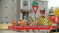 Hot peppers the cause of apartment evacuation in Kasson